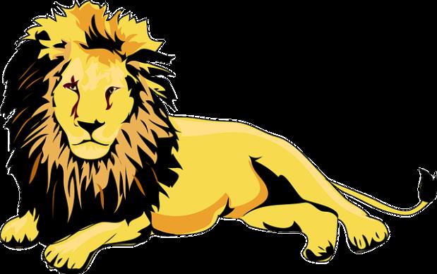 lion-46893_640